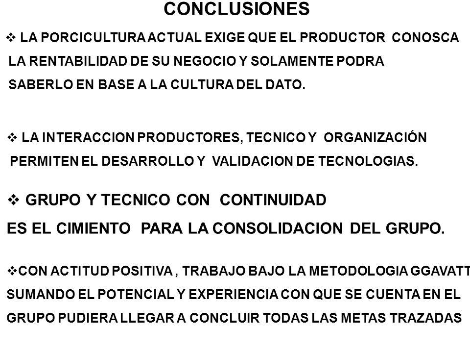 CONCLUSIONES GRUPO Y TECNICO CON CONTINUIDAD