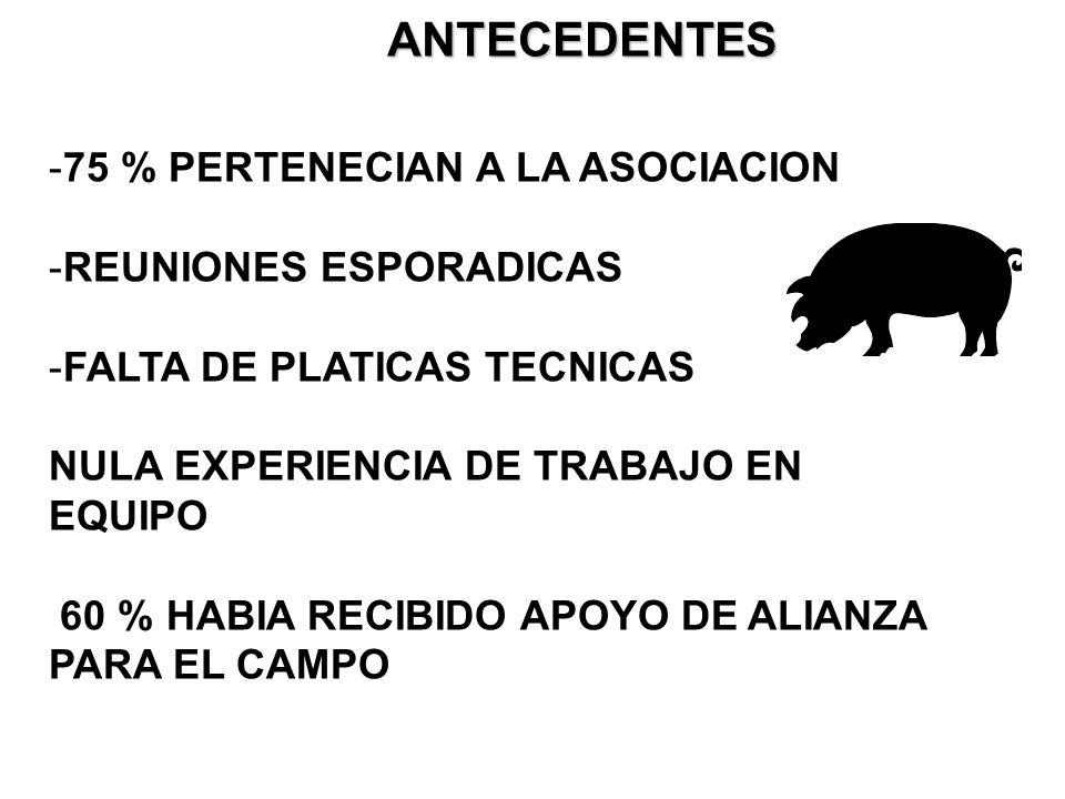 ANTECEDENTES 75 % PERTENECIAN A LA ASOCIACION REUNIONES ESPORADICAS