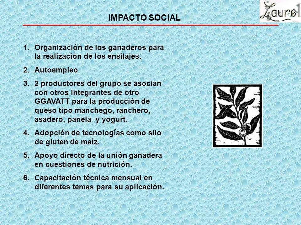 IMPACTO SOCIAL Organización de los ganaderos para la realización de los ensilajes. Autoempleo.
