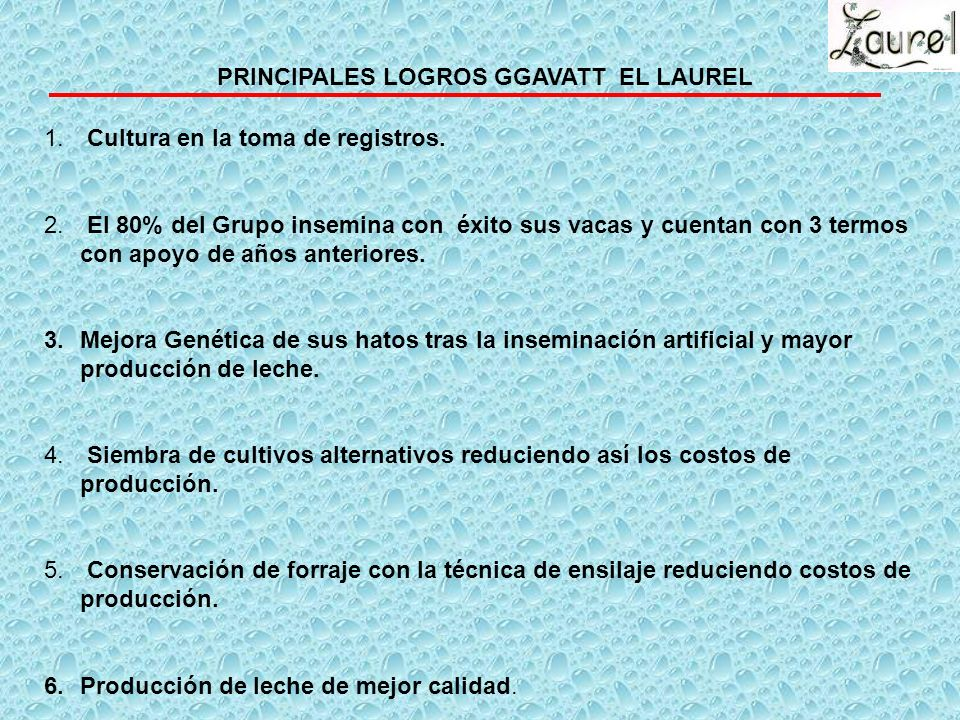 PRINCIPALES LOGROS GGAVATT EL LAUREL