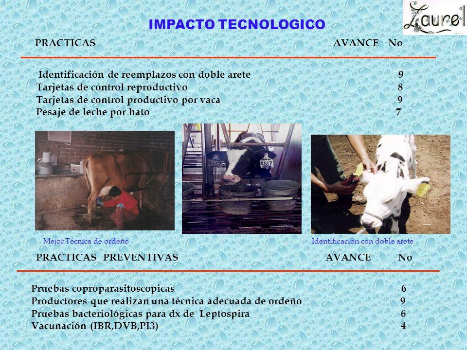 PRACTICAS AVANCE No IMPACTO TECNOLOGICO