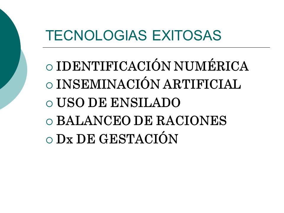 TECNOLOGIAS EXITOSAS IDENTIFICACIÓN NUMÉRICA INSEMINACIÓN ARTIFICIAL
