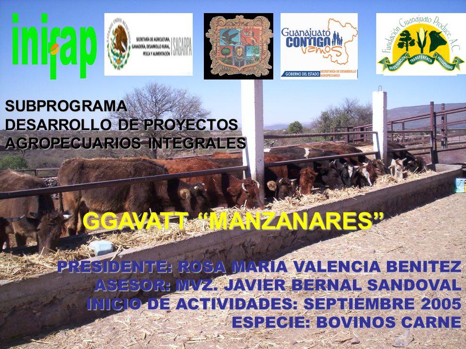 GGAVATT MANZANARES SUBPROGRAMA DESARROLLO DE PROYECTOS