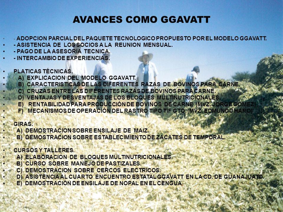 AVANCES COMO GGAVATT - ASISTENCIA DE LOS SOCIOS A LA REUNION MENSUAL.
