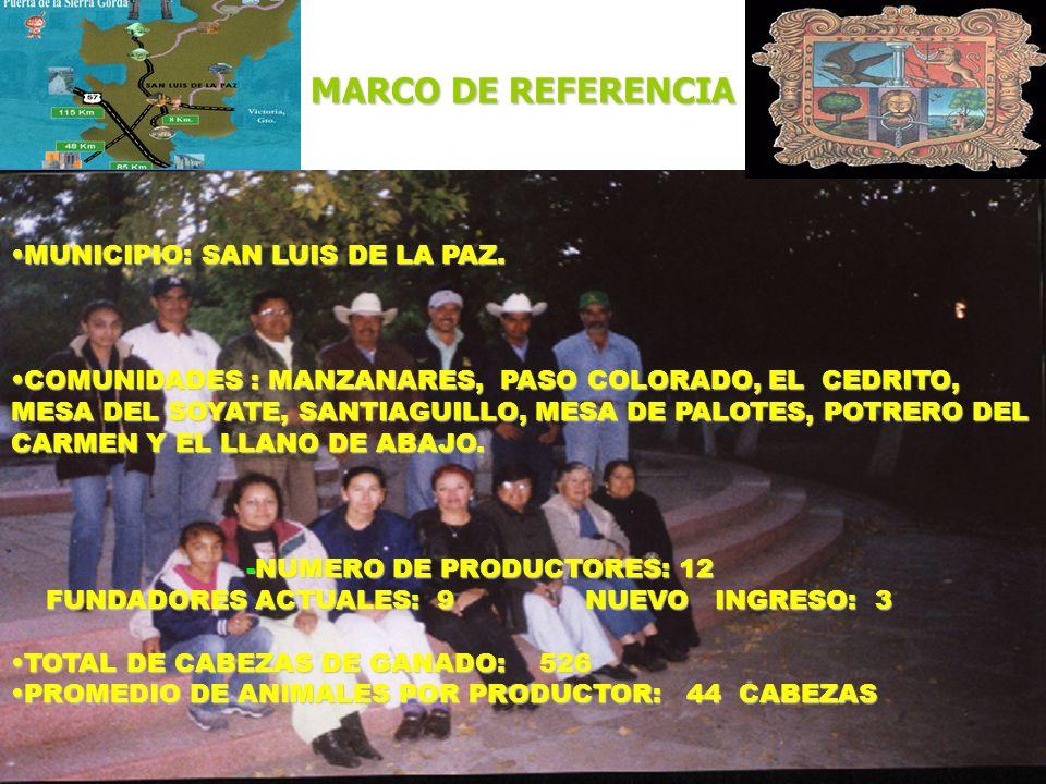 MARCO DE REFERENCIA MUNICIPIO: SAN LUIS DE LA PAZ.
