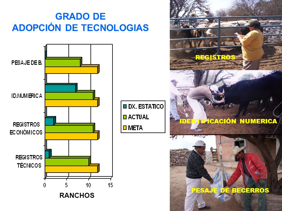 GRADO DE ADOPCIÓN DE TECNOLOGIAS