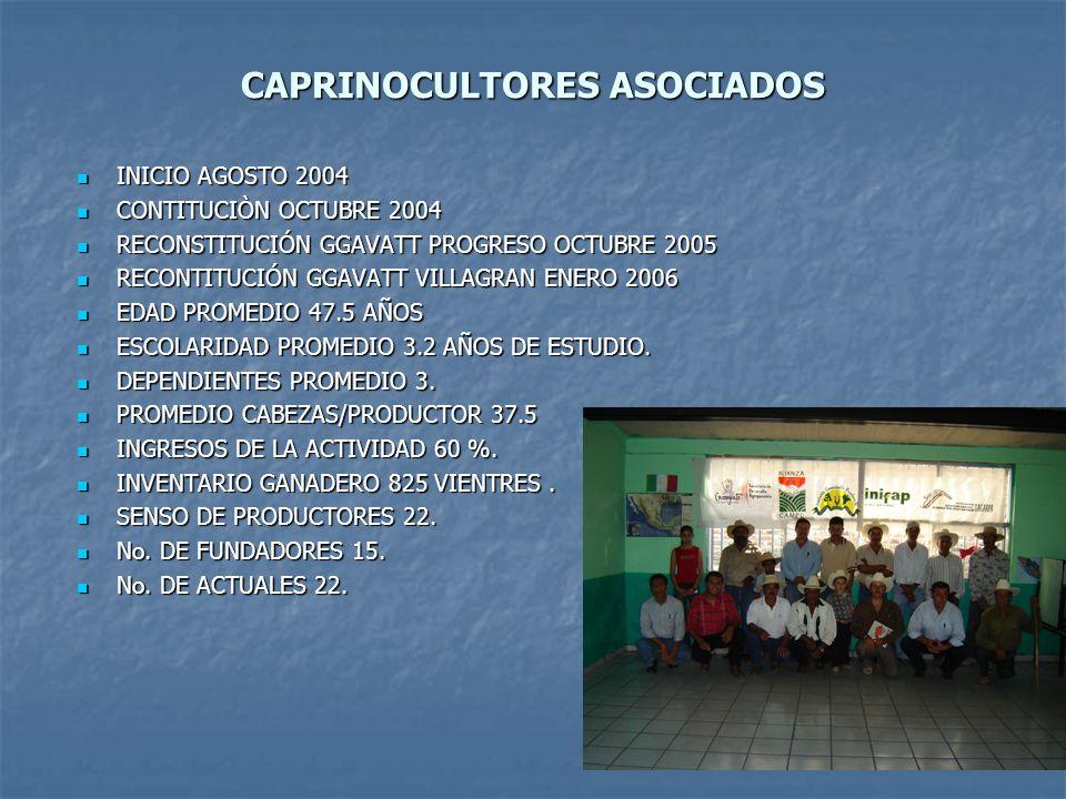 CAPRINOCULTORES ASOCIADOS
