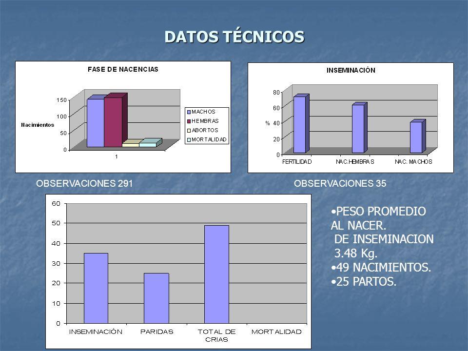 DATOS TÉCNICOS PESO PROMEDIO AL NACER. DE INSEMINACION 3.48 Kg.