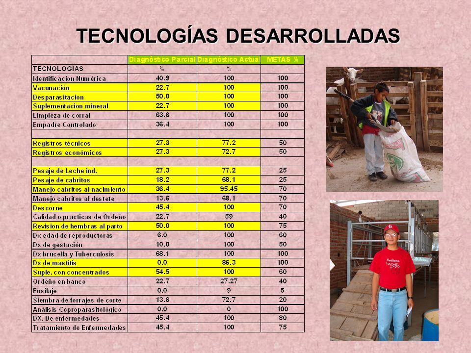 TECNOLOGÍAS DESARROLLADAS