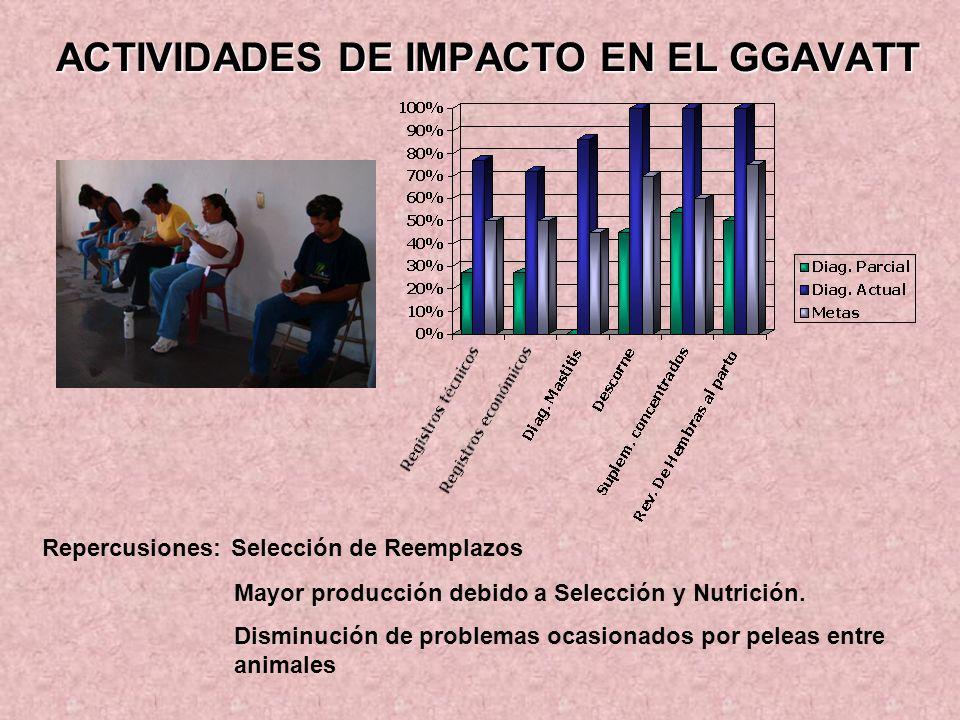 ACTIVIDADES DE IMPACTO EN EL GGAVATT