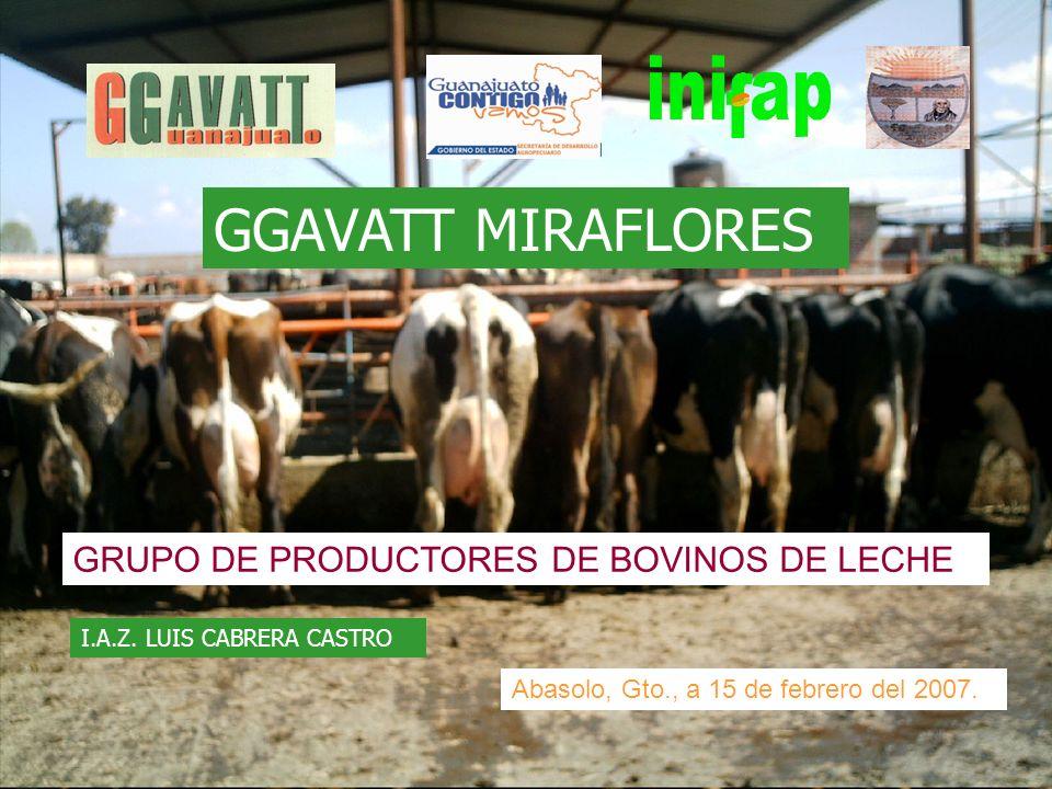 GGAVATT MIRAFLORES GRUPO DE PRODUCTORES DE BOVINOS DE LECHE