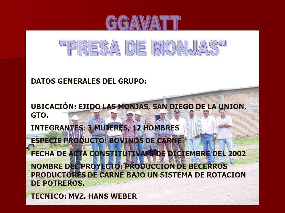 GGAVATT PRESA DE MONJAS DATOS GENERALES DEL GRUPO: