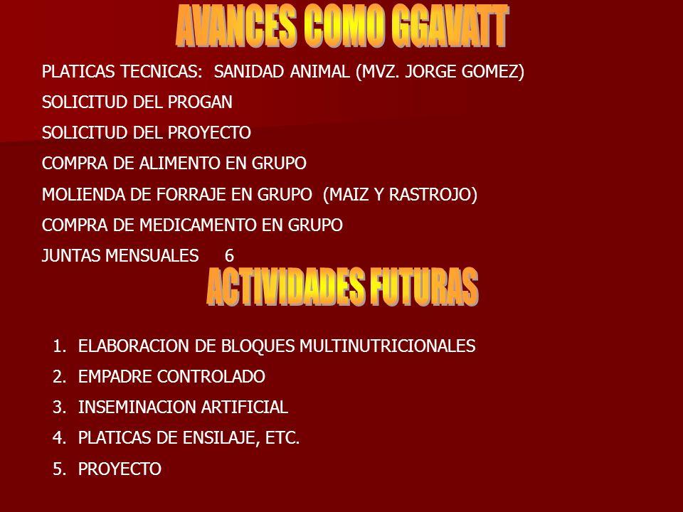 AVANCES COMO GGAVATT ACTIVIDADES FUTURAS