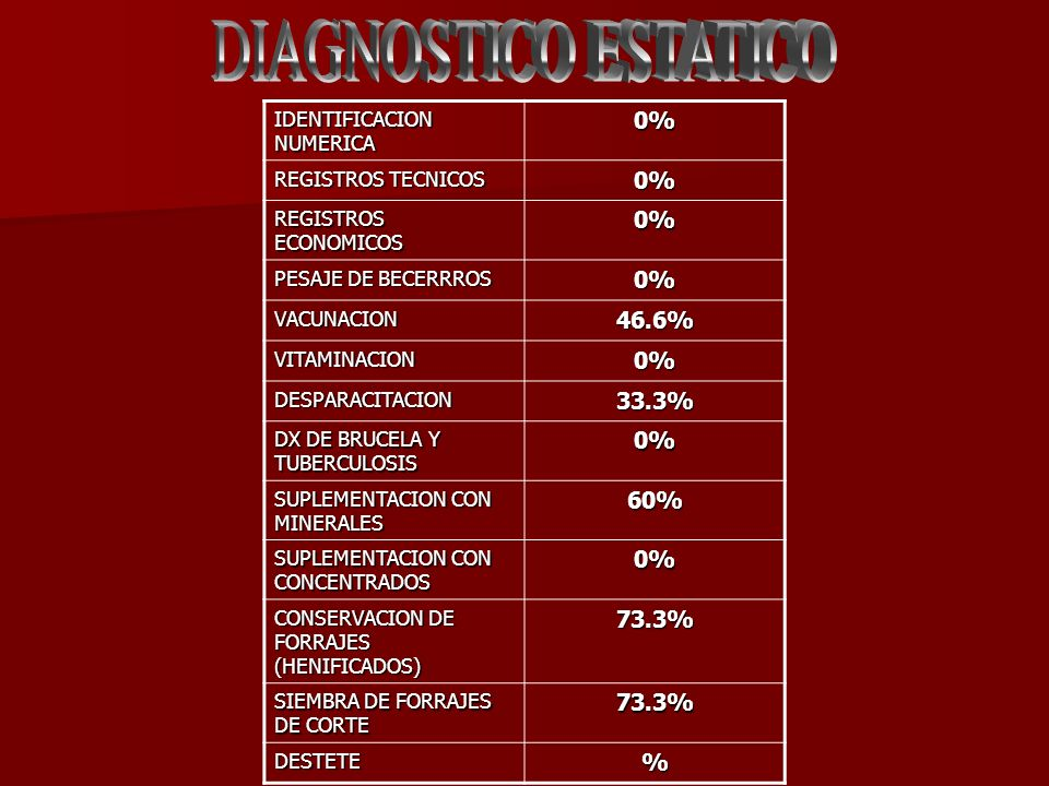 DIAGNOSTICO ESTATICO 0% 46.6% 33.3% 60% 73.3% %