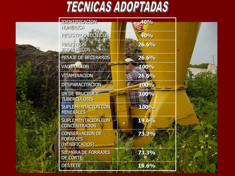 TECNICAS ADOPTADAS 40% 26.6% 100% 19.6% 73.3% IDENTIFICACION NUMERICA