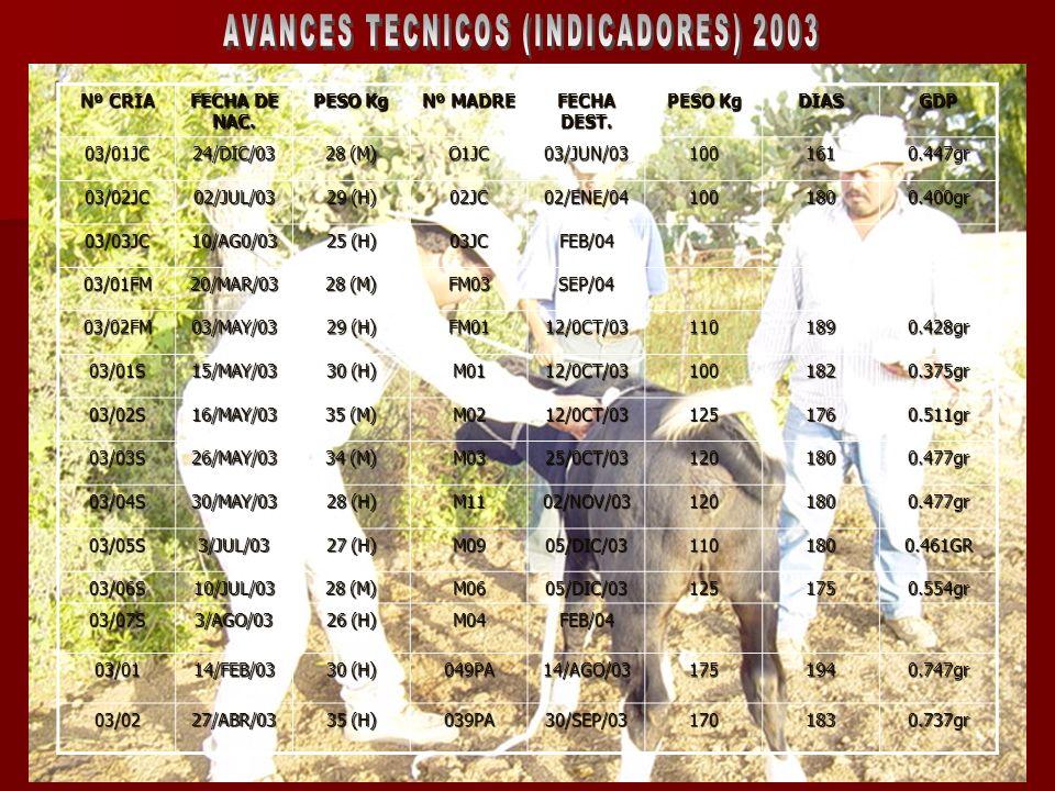 AVANCES TECNICOS (INDICADORES) 2003
