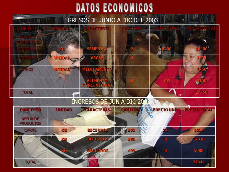 DATOS ECONOMICOS EGRESOS DE JUNIO A DIC DEL 2003