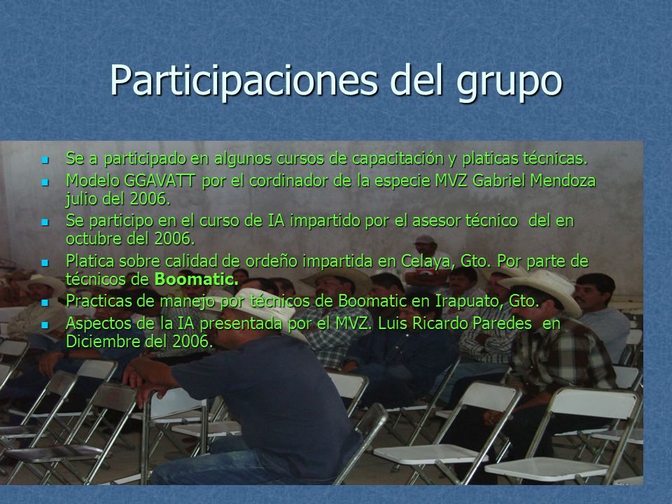 Participaciones del grupo