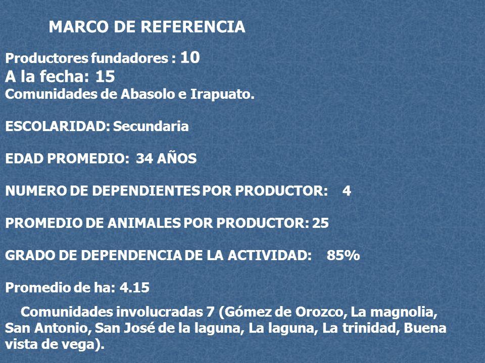 MARCO DE REFERENCIA A la fecha: 15 Productores fundadores : 10