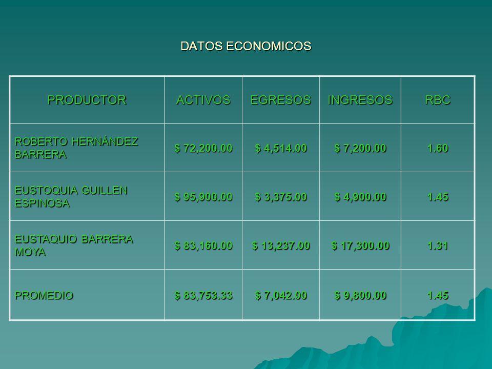 DATOS ECONOMICOS PRODUCTOR ACTIVOS EGRESOS INGRESOS RBC
