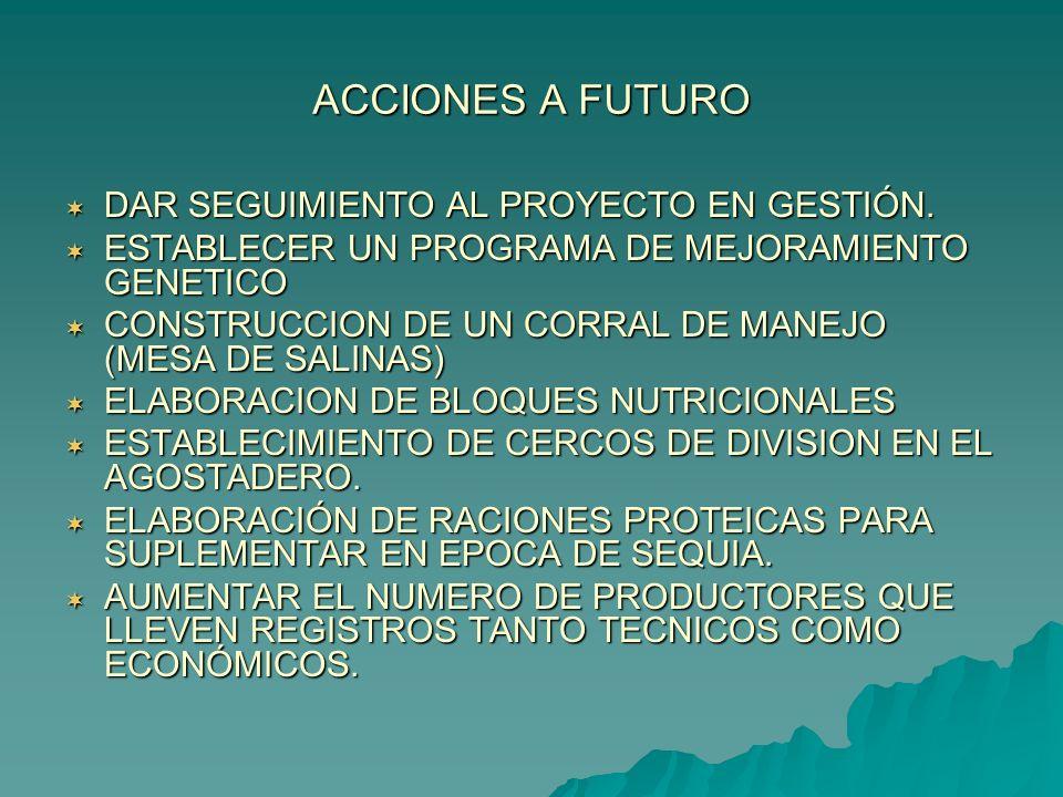 ACCIONES A FUTURO DAR SEGUIMIENTO AL PROYECTO EN GESTIÓN.