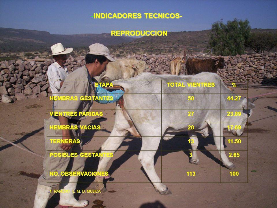 -INDICADORES TECNICOS-