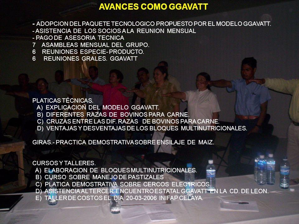 AVANCES COMO GGAVATT - ADOPCION DEL PAQUETE TECNOLOGICO PROPUESTO POR EL MODELO GGAVATT. - ASISTENCIA DE LOS SOCIOS A LA REUNION MENSUAL.