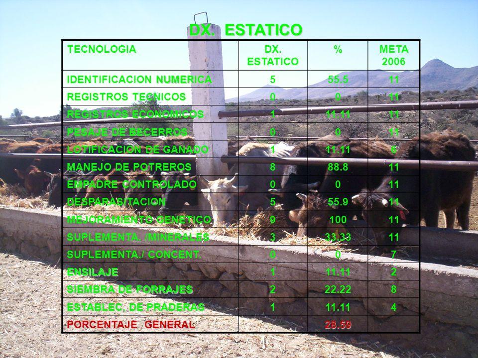 DX. ESTATICO TECNOLOGIA DX. ESTATICO % META 2006