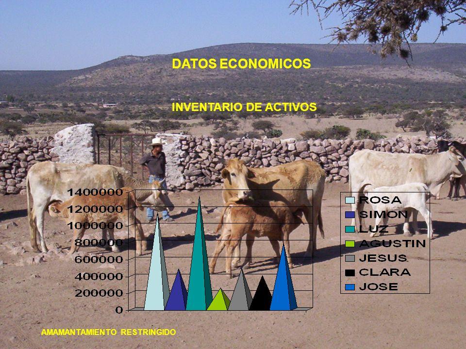 DATOS ECONOMICOS INVENTARIO DE ACTIVOS AMAMANTAMIENTO RESTRINGIDO