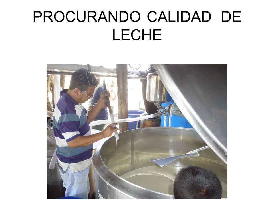 PROCURANDO CALIDAD DE LECHE