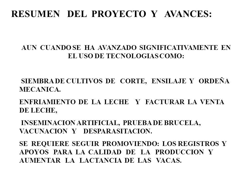 RESUMEN DEL PROYECTO Y AVANCES: