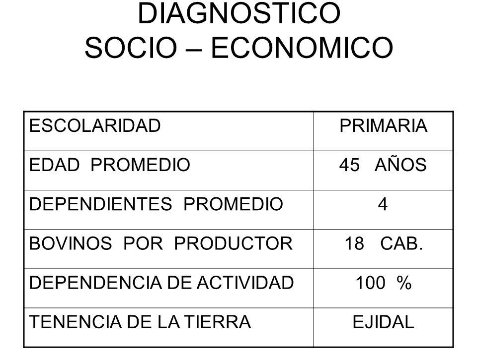 DIAGNOSTICO SOCIO – ECONOMICO