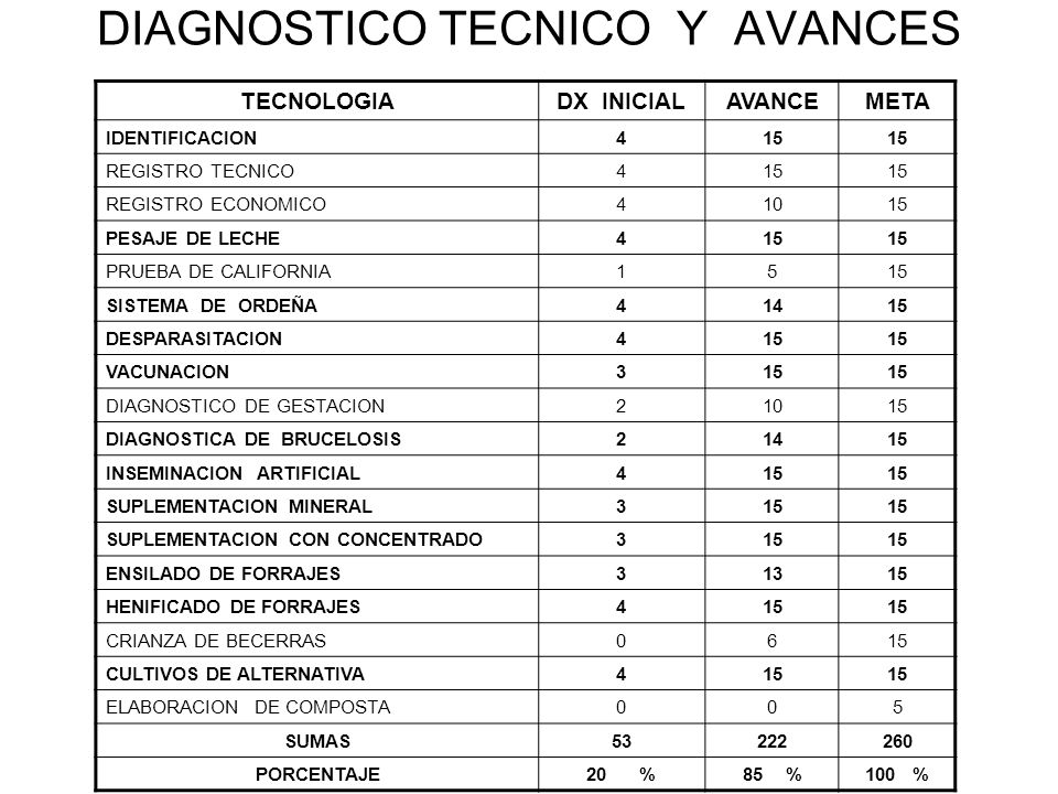 DIAGNOSTICO TECNICO Y AVANCES