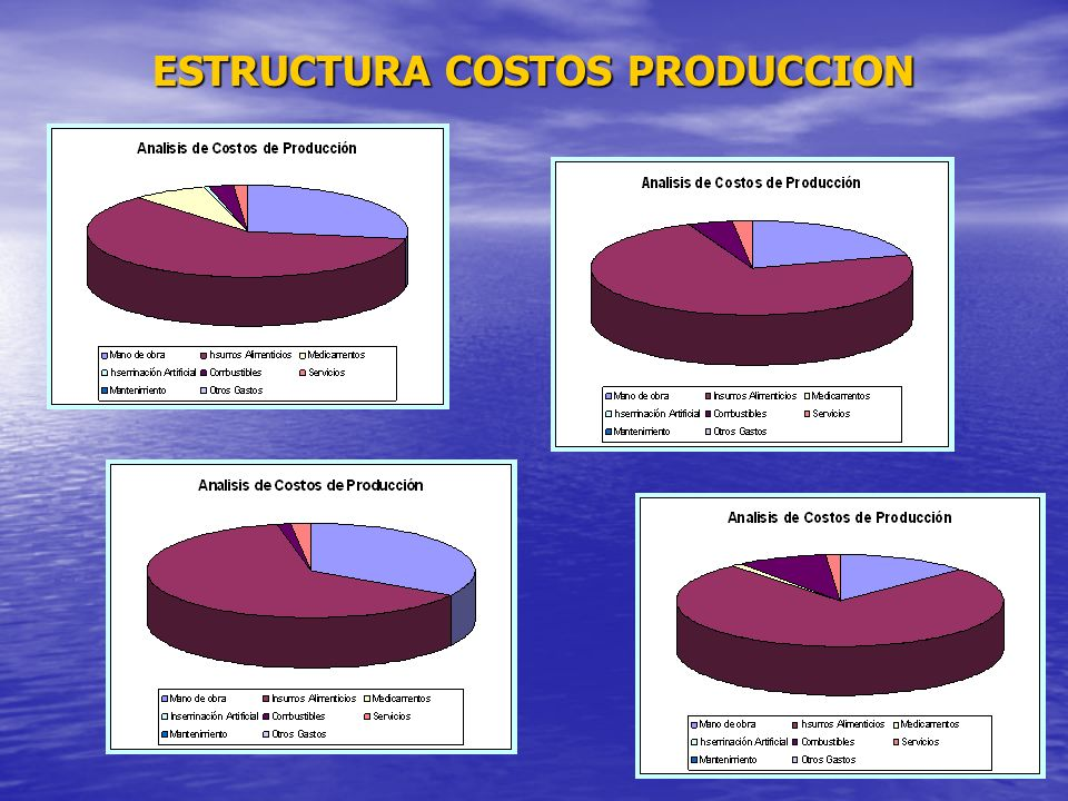 ESTRUCTURA COSTOS PRODUCCION