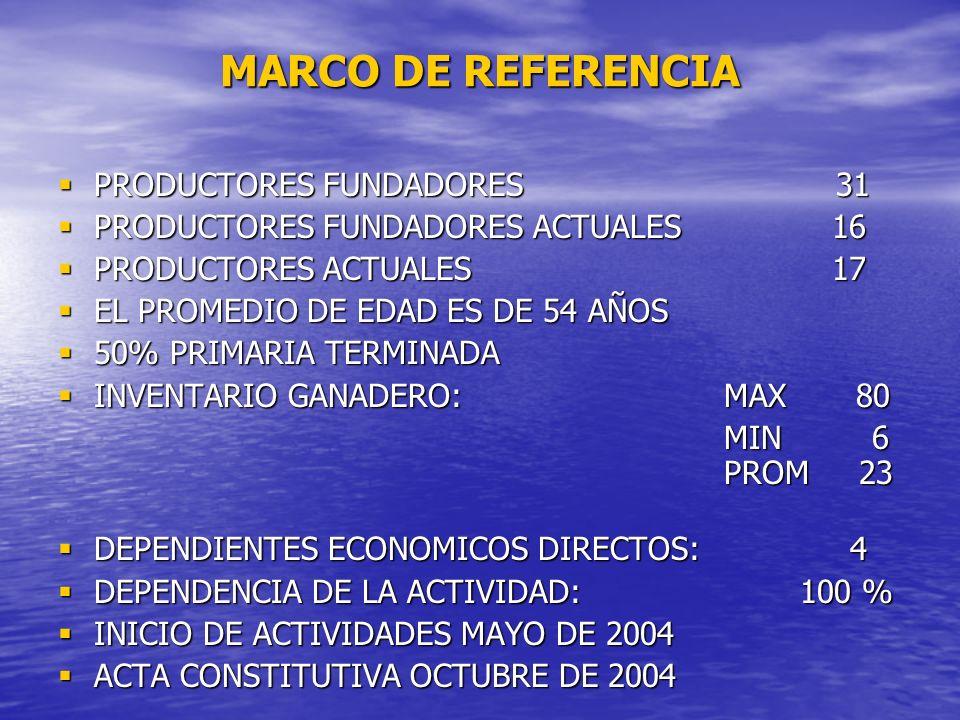 MARCO DE REFERENCIA PRODUCTORES FUNDADORES 31