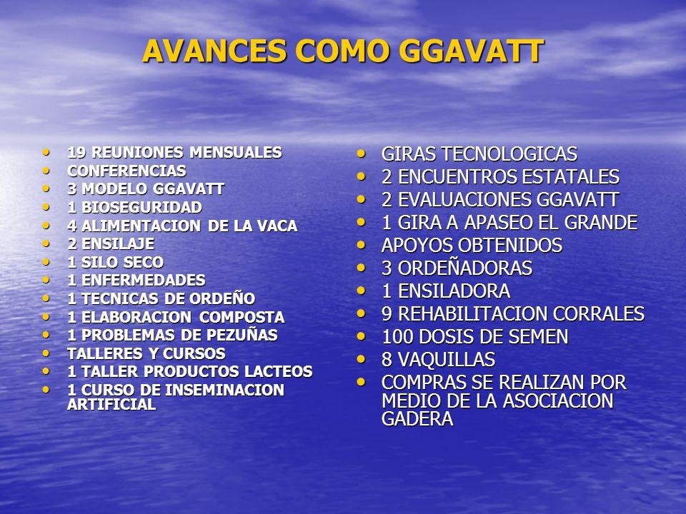 AVANCES COMO GGAVATT GIRAS TECNOLOGICAS 2 ENCUENTROS ESTATALES