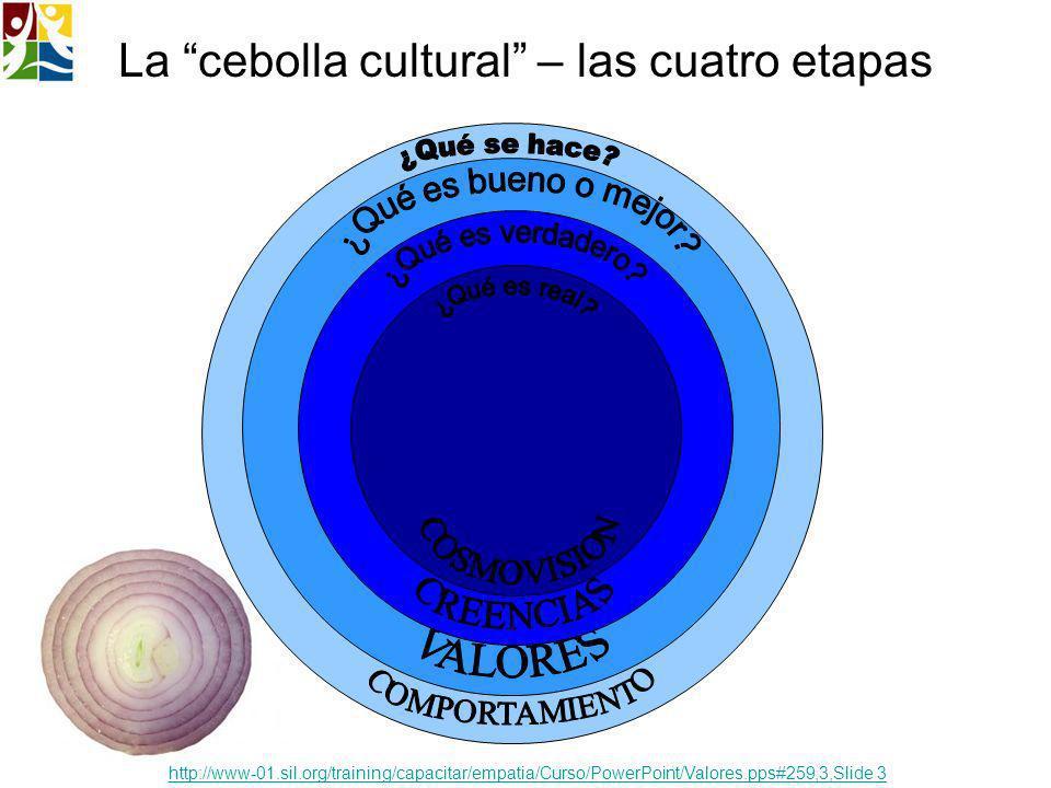 La cebolla cultural – las cuatro etapas