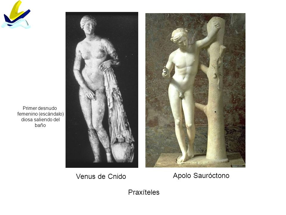 Apolo Sauróctono Venus de Cnido Praxíteles Primer desnudo