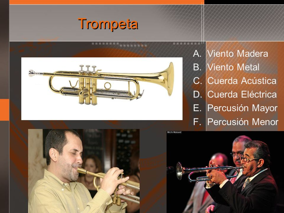 Trompeta Viento Madera Viento Metal Cuerda Acústica Cuerda Eléctrica