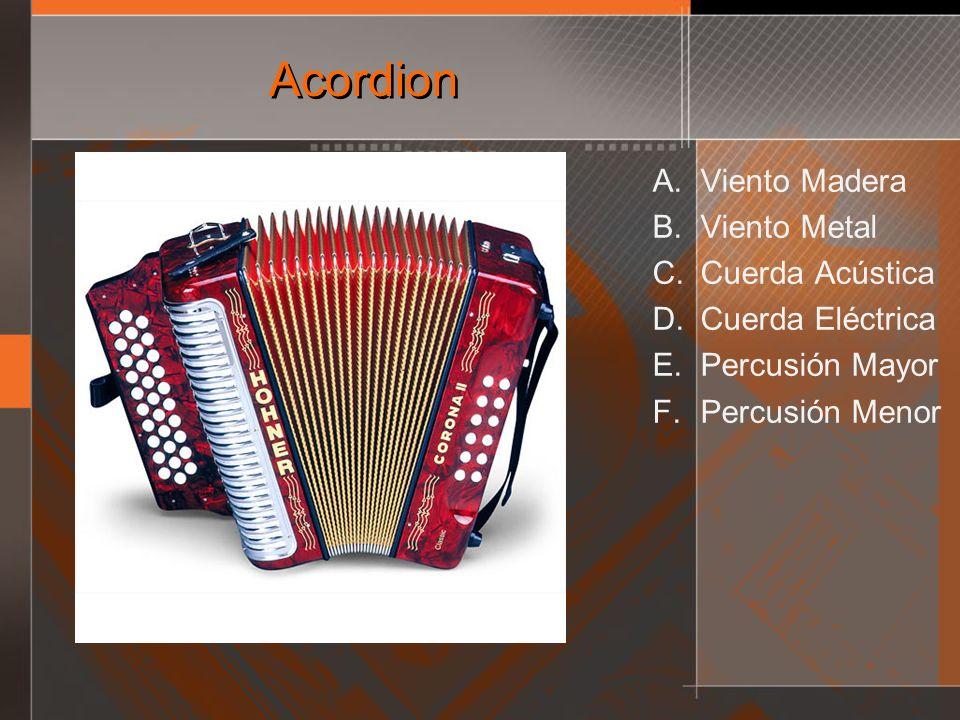 Acordion Viento Madera Viento Metal Cuerda Acústica Cuerda Eléctrica