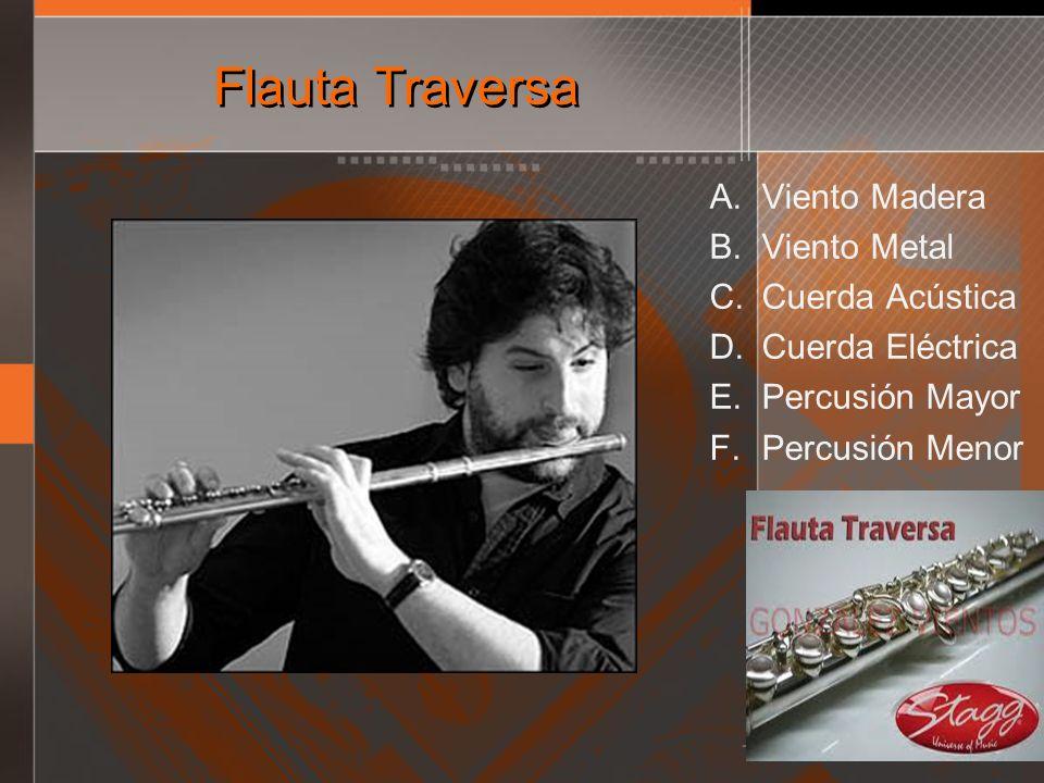 Flauta Traversa Viento Madera Viento Metal Cuerda Acústica
