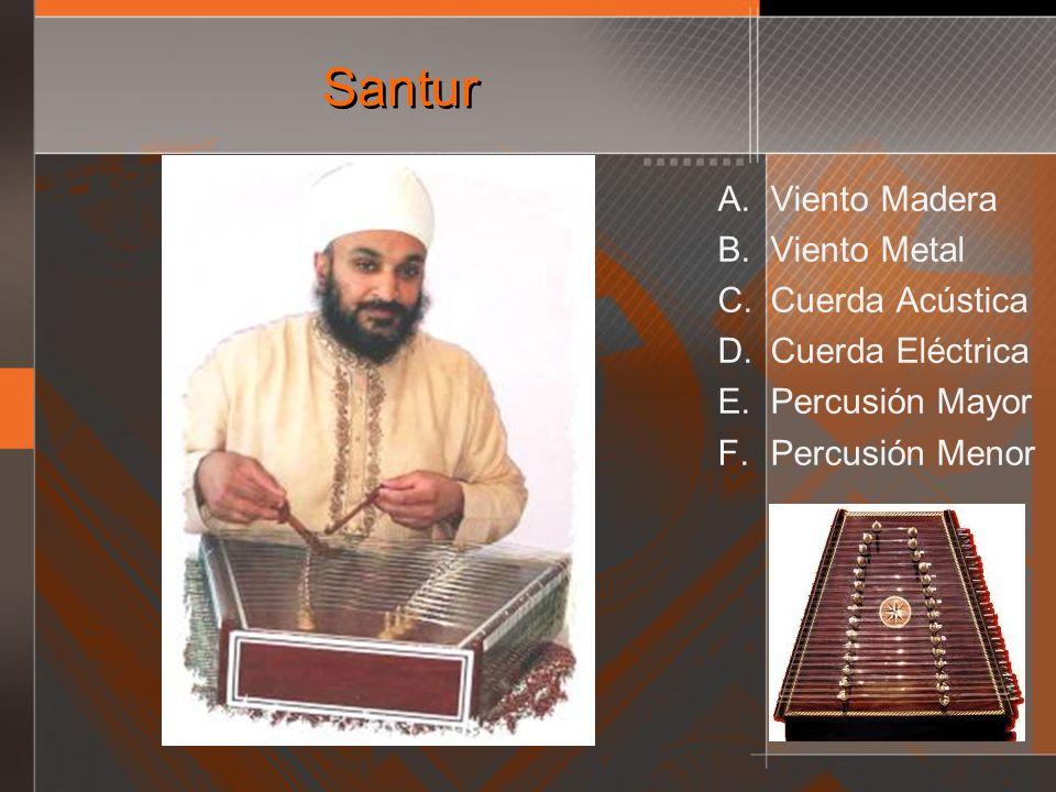 Santur Viento Madera Viento Metal Cuerda Acústica Cuerda Eléctrica