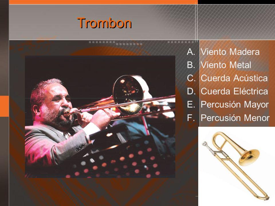 Trombon Viento Madera Viento Metal Cuerda Acústica Cuerda Eléctrica