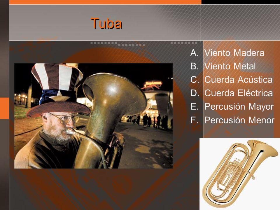 Tuba Viento Madera Viento Metal Cuerda Acústica Cuerda Eléctrica