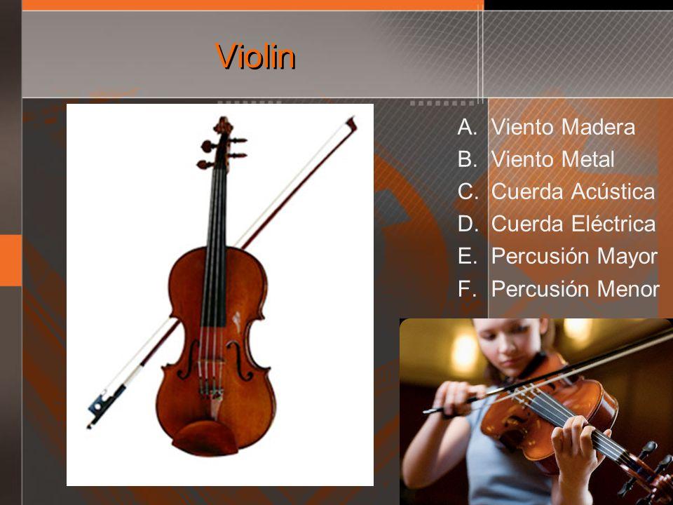 Violin Viento Madera Viento Metal Cuerda Acústica Cuerda Eléctrica