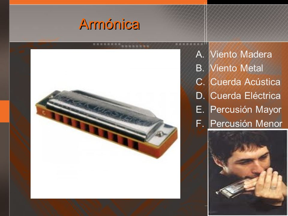 Armónica Viento Madera Viento Metal Cuerda Acústica Cuerda Eléctrica