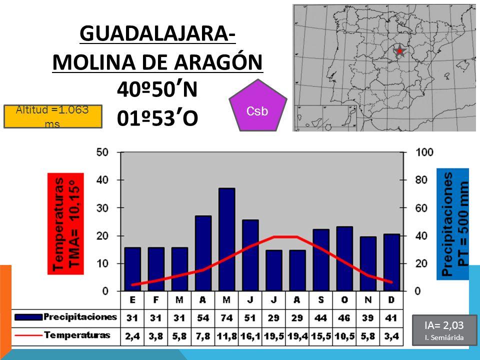 GUADALAJARA-MOLINA DE ARAGÓN