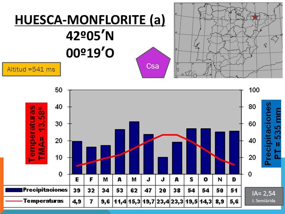 HUESCA-MONFLORITE (a)