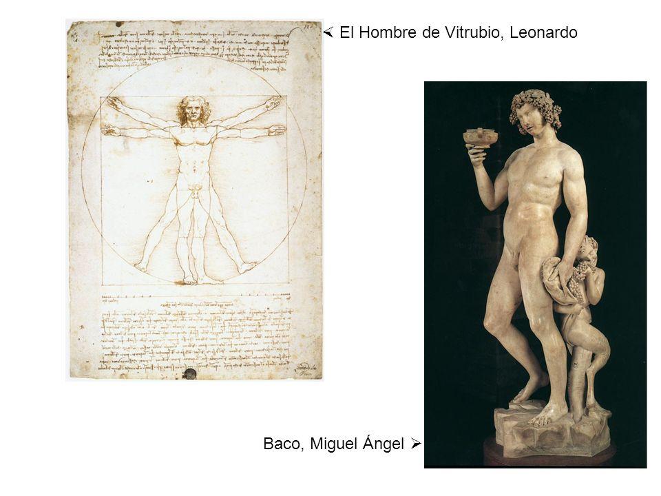 El Hombre de Vitrubio, Leonardo