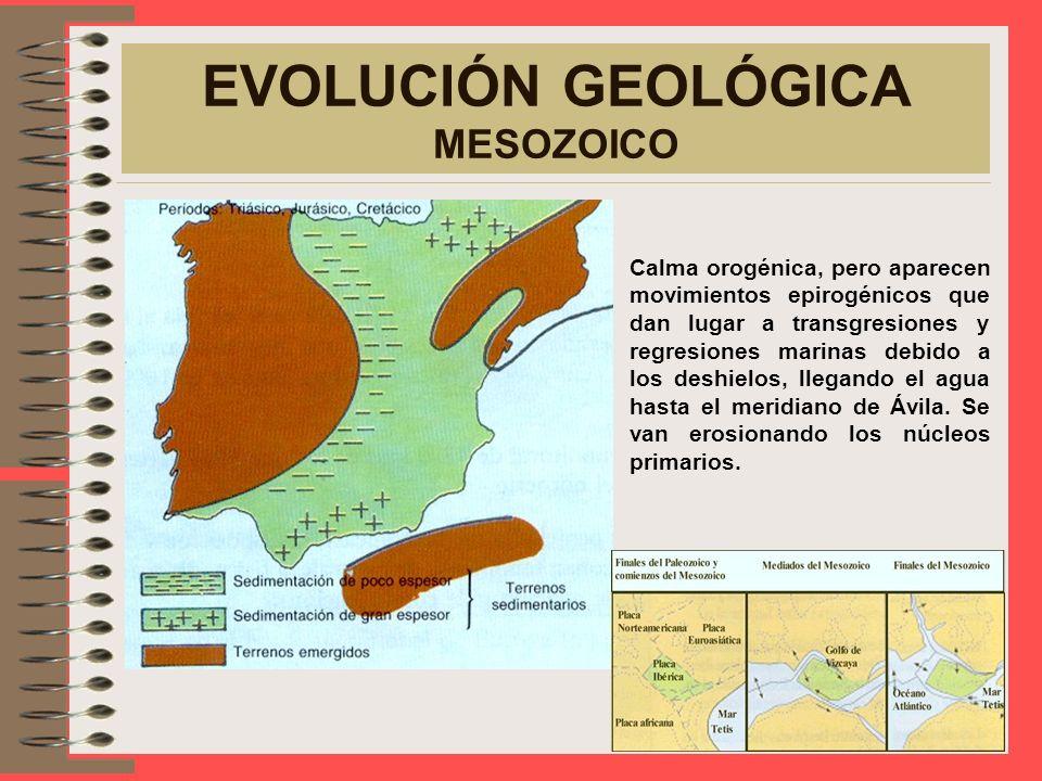 EVOLUCIÓN GEOLÓGICA MESOZOICO